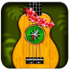 Find-the-perfect-ukulele-chords-icon