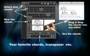Program_that_will_help_you_master_bass_chords